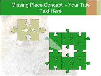 0000076565 PowerPoint Templates - Slide 45