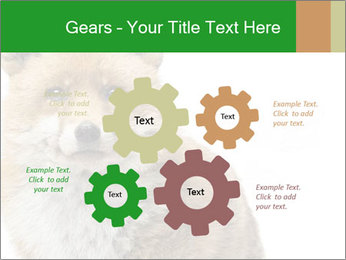 0000076565 PowerPoint Templates - Slide 47
