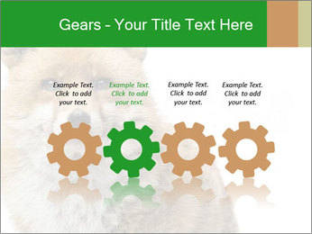 0000076565 PowerPoint Template - Slide 48