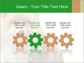 0000076565 PowerPoint Templates - Slide 48