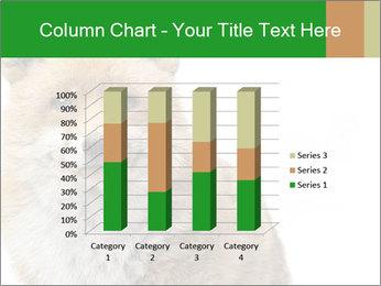 0000076565 PowerPoint Templates - Slide 50
