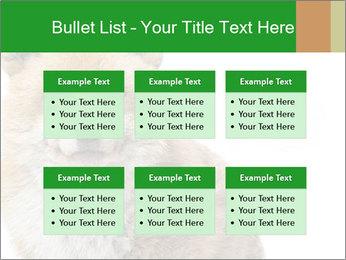 0000076565 PowerPoint Templates - Slide 56