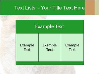 0000076565 PowerPoint Templates - Slide 59
