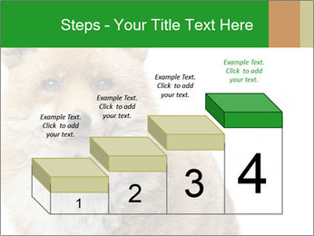 0000076565 PowerPoint Templates - Slide 64
