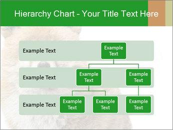 0000076565 PowerPoint Templates - Slide 67