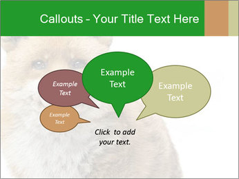 0000076565 PowerPoint Templates - Slide 73