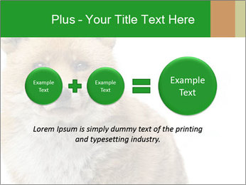 0000076565 PowerPoint Template - Slide 75