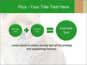 0000076565 PowerPoint Templates - Slide 75