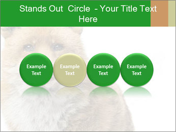 0000076565 PowerPoint Templates - Slide 76