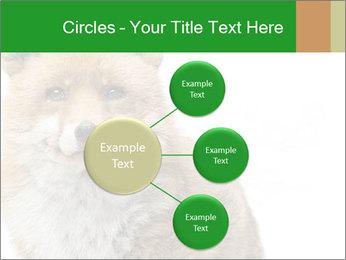 0000076565 PowerPoint Templates - Slide 79