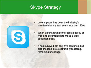 0000076565 PowerPoint Template - Slide 8