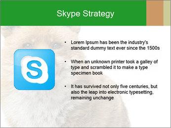 0000076565 PowerPoint Templates - Slide 8