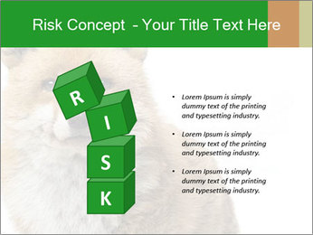 0000076565 PowerPoint Templates - Slide 81