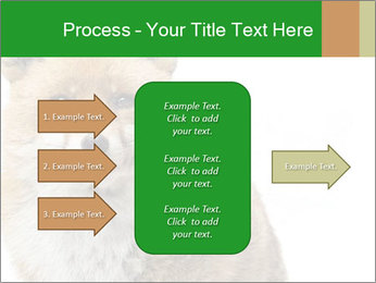 0000076565 PowerPoint Template - Slide 85