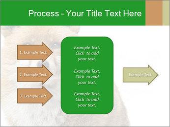 0000076565 PowerPoint Templates - Slide 85