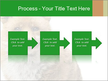 0000076565 PowerPoint Template - Slide 88