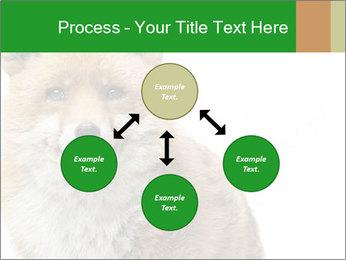0000076565 PowerPoint Templates - Slide 91