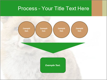 0000076565 PowerPoint Template - Slide 93