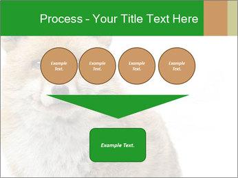 0000076565 PowerPoint Templates - Slide 93