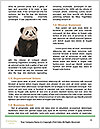0000076565 Word Templates - Page 4