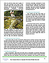 0000076567 Word Template - Page 4