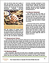 0000076570 Word Templates - Page 4