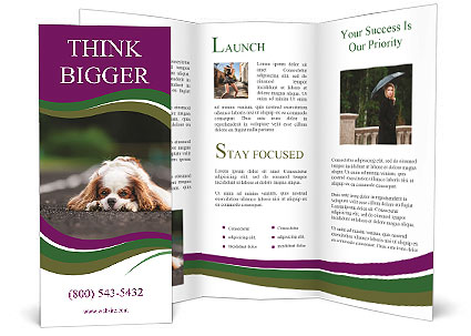 0000076592 Brochure Template