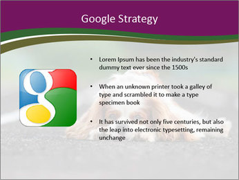 0000076592 PowerPoint Template - Slide 10