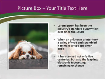 0000076592 PowerPoint Template - Slide 13
