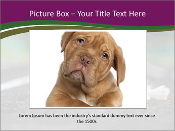 0000076592 PowerPoint Template - Slide 16