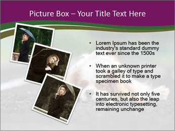 0000076592 PowerPoint Template - Slide 17
