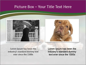 0000076592 PowerPoint Template - Slide 18