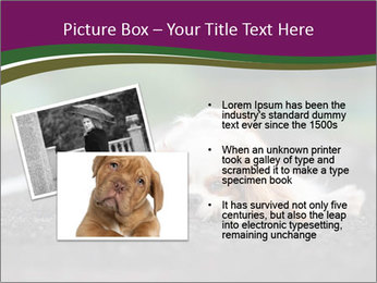 0000076592 PowerPoint Template - Slide 20