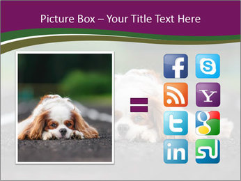 0000076592 PowerPoint Template - Slide 21