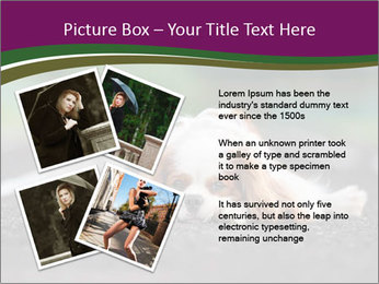 0000076592 PowerPoint Template - Slide 23