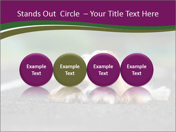 0000076592 PowerPoint Template - Slide 76