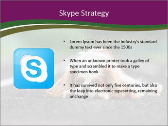 0000076592 PowerPoint Template - Slide 8