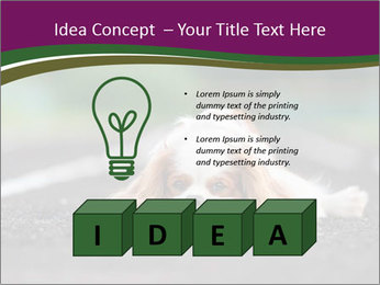 0000076592 PowerPoint Template - Slide 80