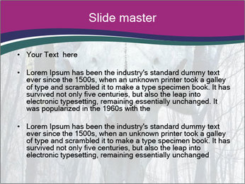 0000076594 PowerPoint Template - Slide 2