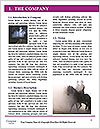 0000076594 Word Template - Page 3