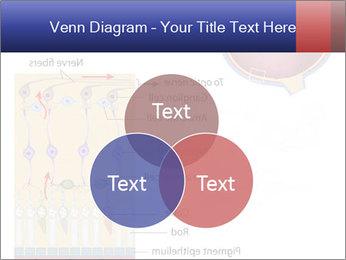 0000076604 PowerPoint Template - Slide 33