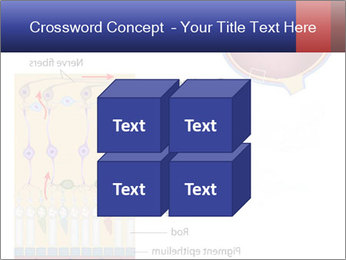0000076604 PowerPoint Template - Slide 39