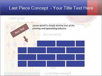 0000076604 PowerPoint Template - Slide 46