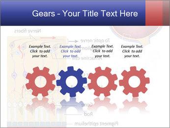 0000076604 PowerPoint Template - Slide 48