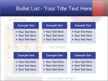 0000076604 PowerPoint Template - Slide 56