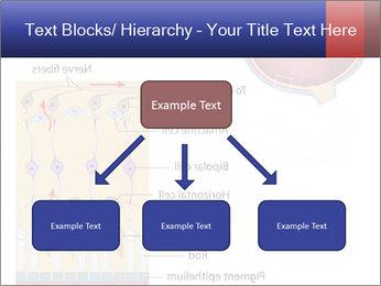 0000076604 PowerPoint Template - Slide 69