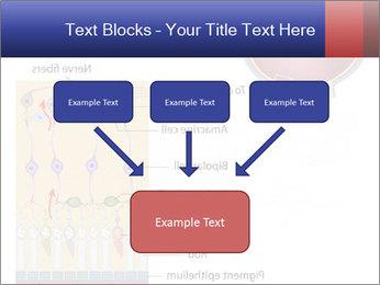 0000076604 PowerPoint Template - Slide 70