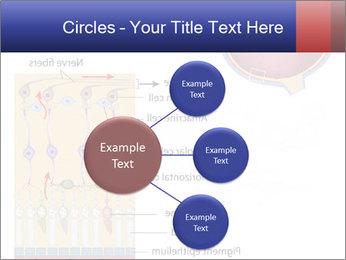 0000076604 PowerPoint Template - Slide 79