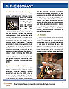 0000076610 Word Template - Page 3