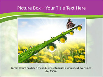 0000076611 PowerPoint Templates - Slide 16